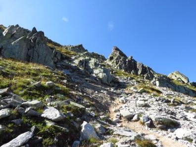 Ascent to Curumatura Bucurei