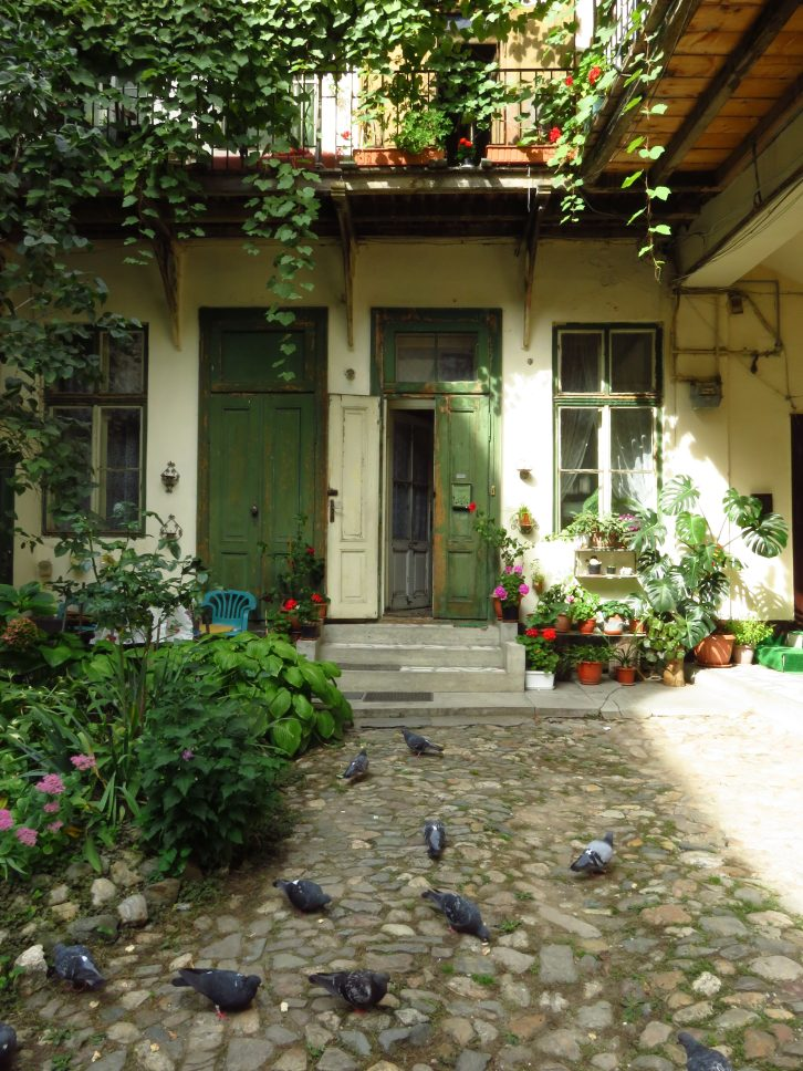 Courtyard and pigeons