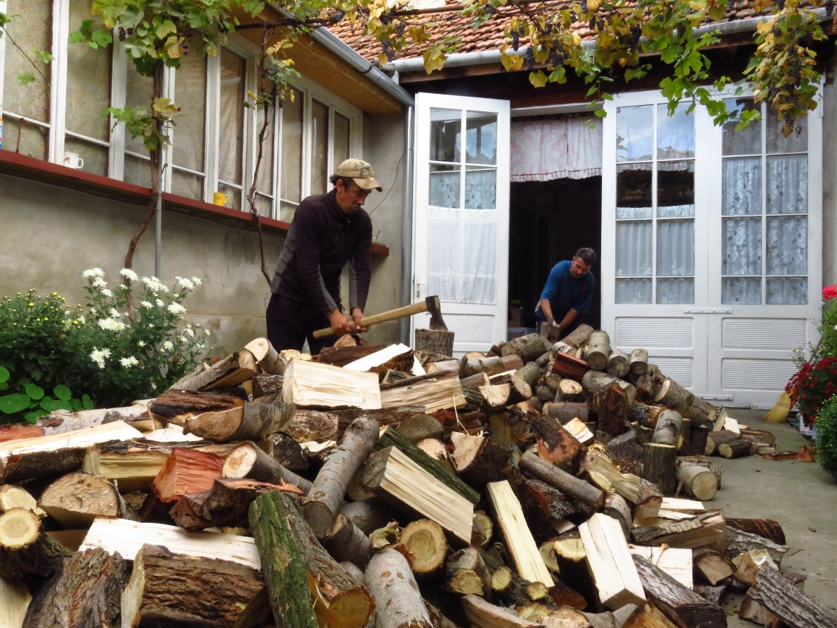 The men chopping wood for winter