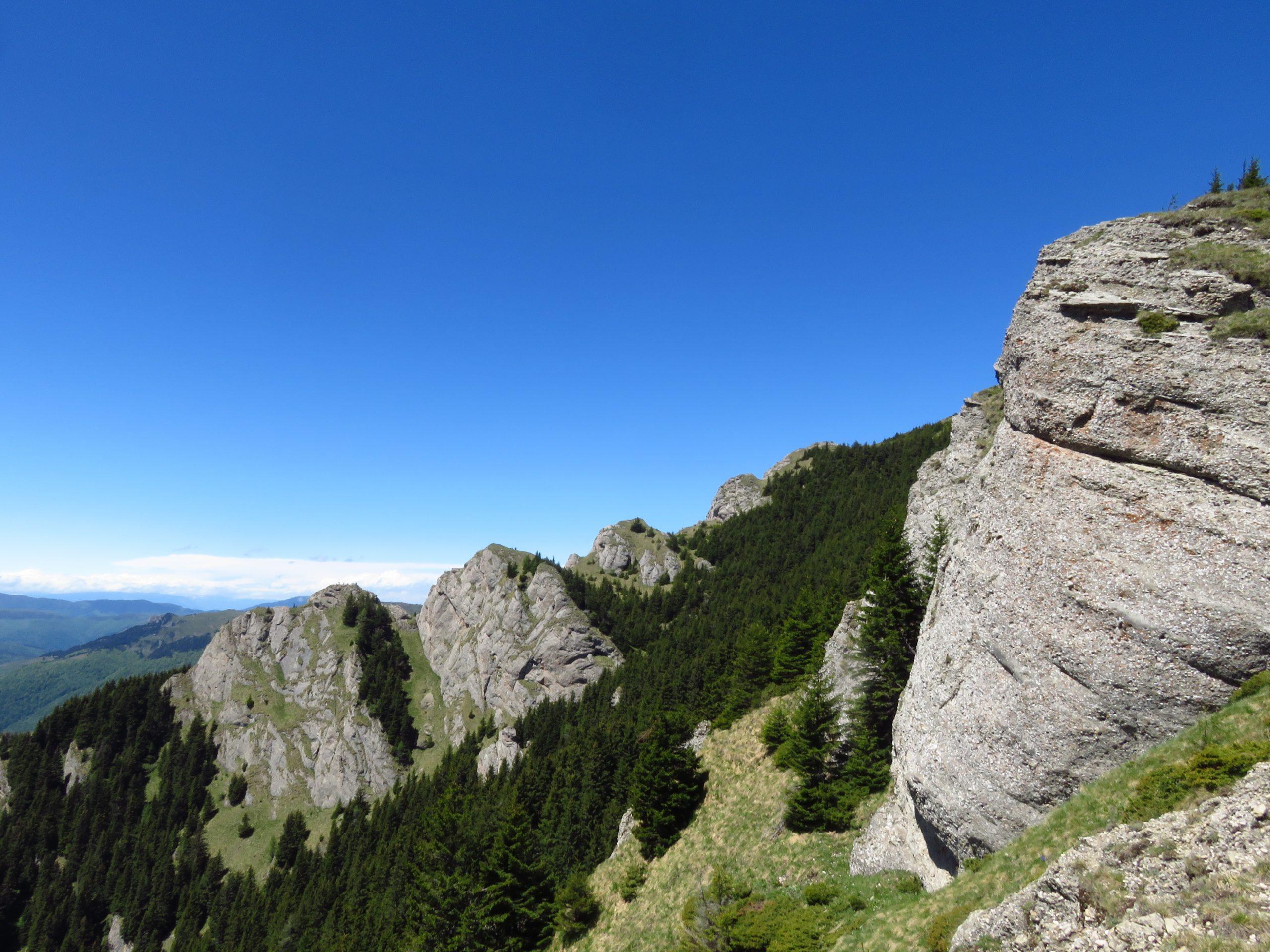 ciucas mountains romania bratocea spur