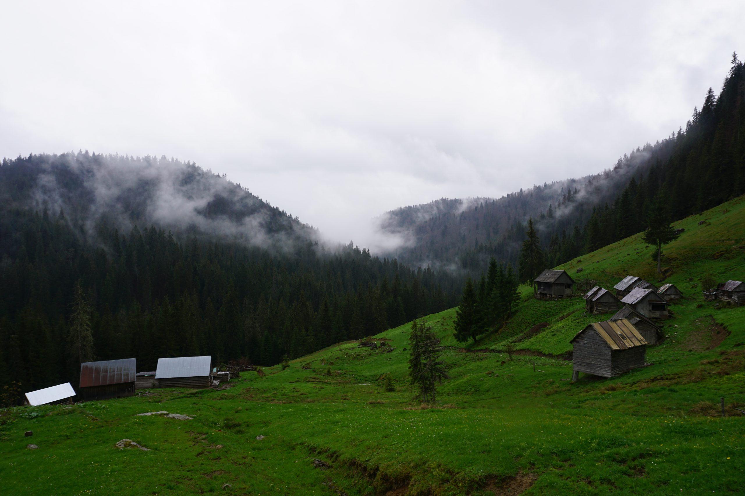 Hiking in Padis, Apuseni, Romania
