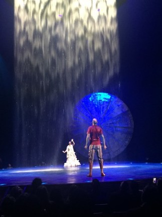 cirque du soleil luzia character