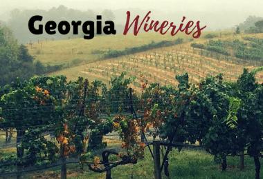 north-georgia-wineries-roamilicious