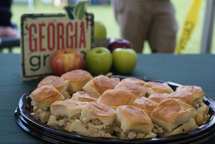 spirit of appalachia food festival