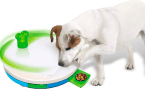 dog-travel-best-toys-treats-roamilicious
