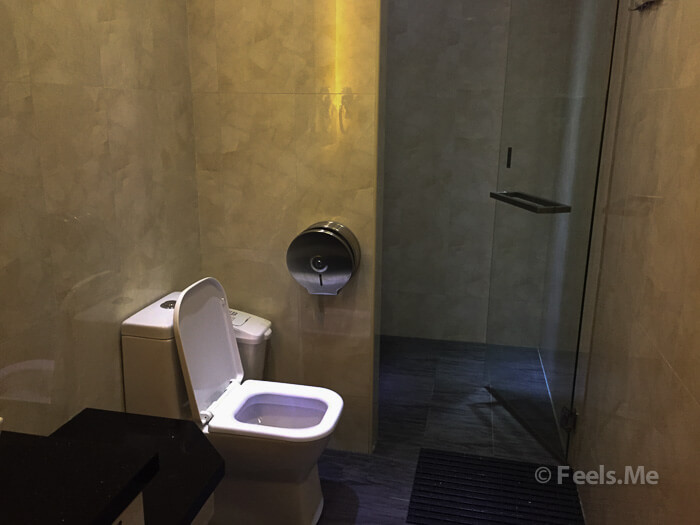 SATS Lounge Singapore Changi Terminal 1 Bathroom & Shower