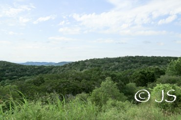 Texas views