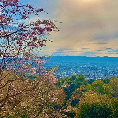Views of Kyoto