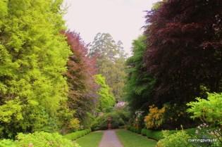 Travel Melbourne Photography Blog Cloudehill Garden_7