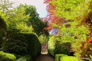 Travel Melbourne Photography Blog Cloudehill Garden_6