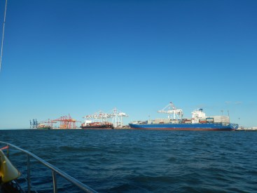 Container ships are everywhere when you sail out of Brisbane via Morton Bay.