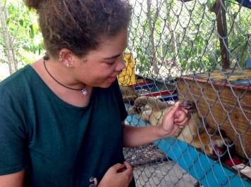 (Costa Rica Animal Rescue Centre)