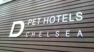 D Chelsea Pet Hotel