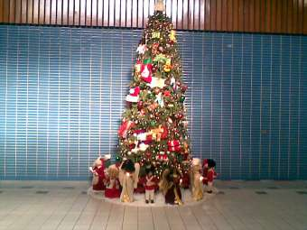 Rochdale Village Bldg 8 Christmas tree several years ago