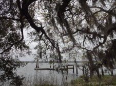 The picturesque Carolina Lowcountry.