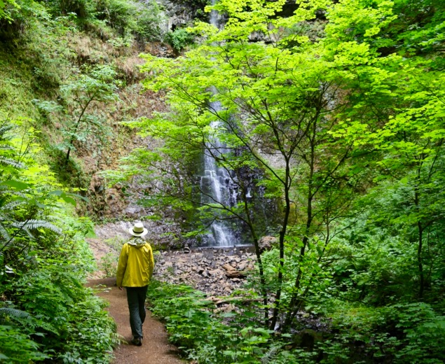 Hiking Silver Falls State Park, Oregon