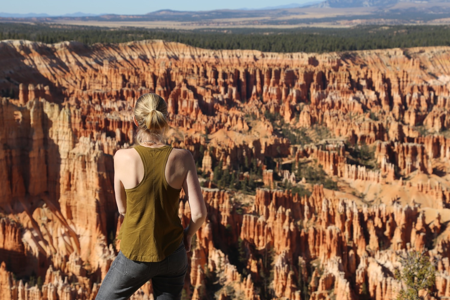 Hit all the major vista points in Bryce Canyon National Park with Highway 63, skirting the rim of the hoodoo filled amphitheater.
