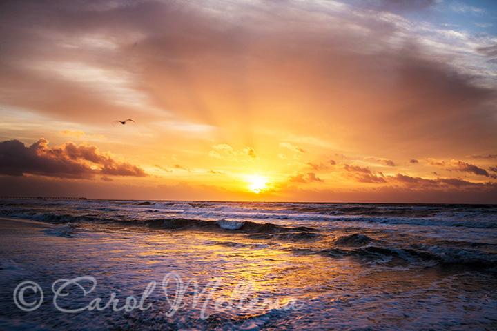 Sunrise on the beach with sunbeams Gulf Shores Alabama beach
