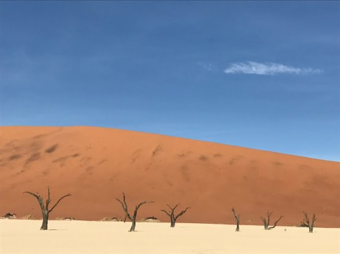 Classic desert shot.
