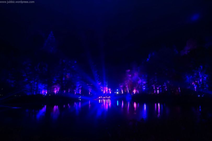Enchanted Forest_27