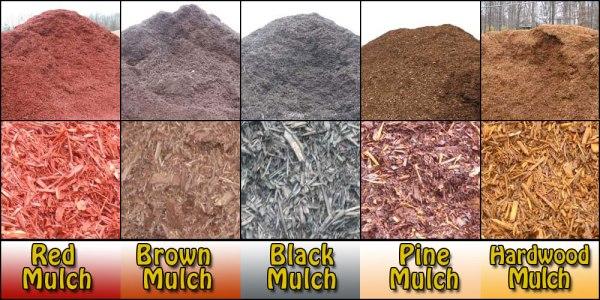 important mulch