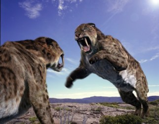amazing_fun_ecology_Smilodon_Sabre_Tooth_Cat_2009072322083911101