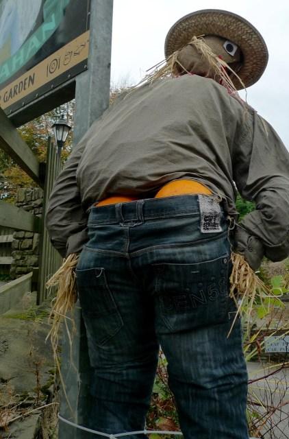 backside