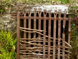 Roaringwater Well Gate