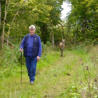Mearescourt trail