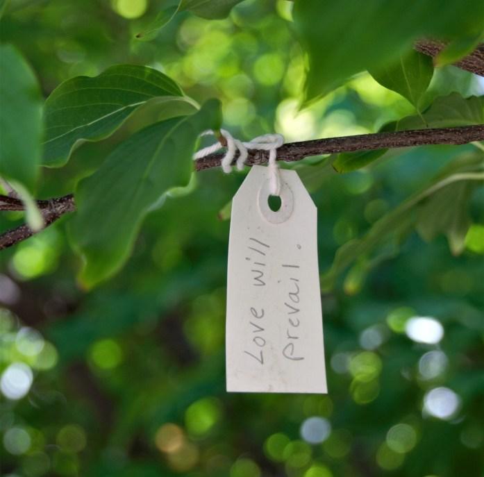 Yoko Ono Wish tree at Hirshhorn Sculpture Park