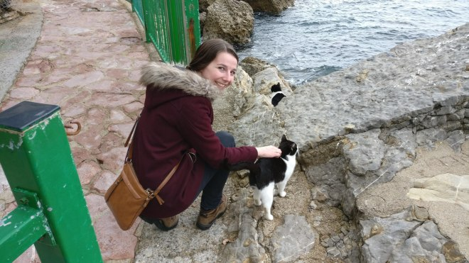 Lots of kittens (seven of them) around the coast line, almost very friendly
