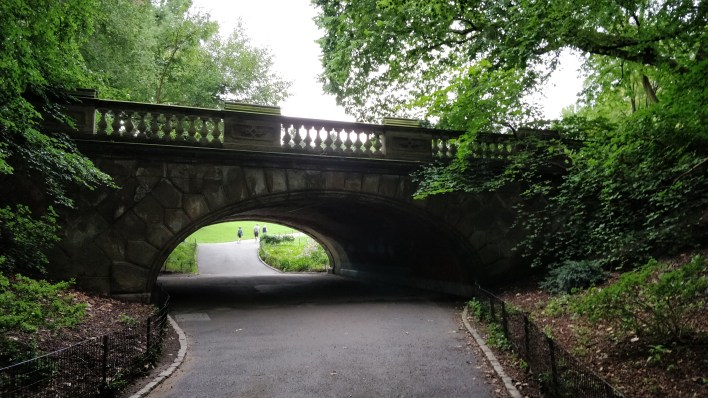 Beautiful bridges in Central Park