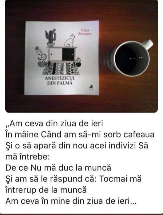 viku zenescu
