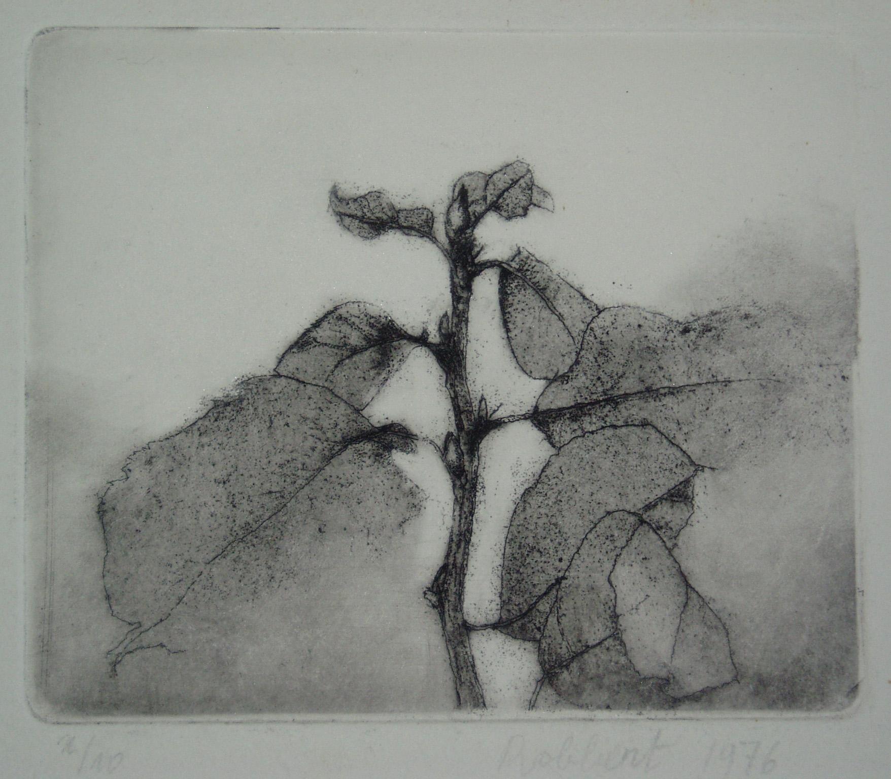 Robbert Ruigrok, 'Mystic Branch', 1976. Etching.
