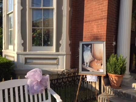 Cats outside the Bagbey House, May 2015 Art Scene