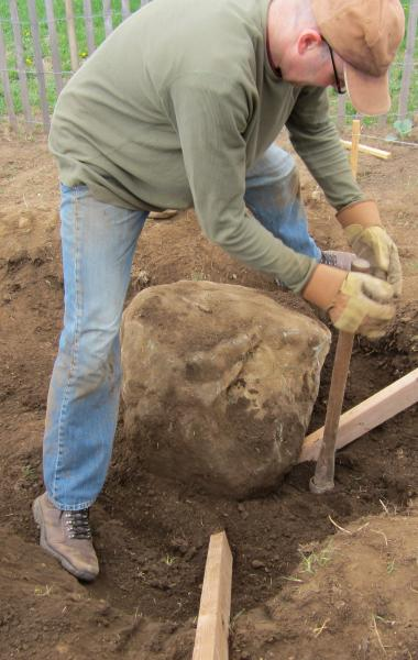 Willy freed