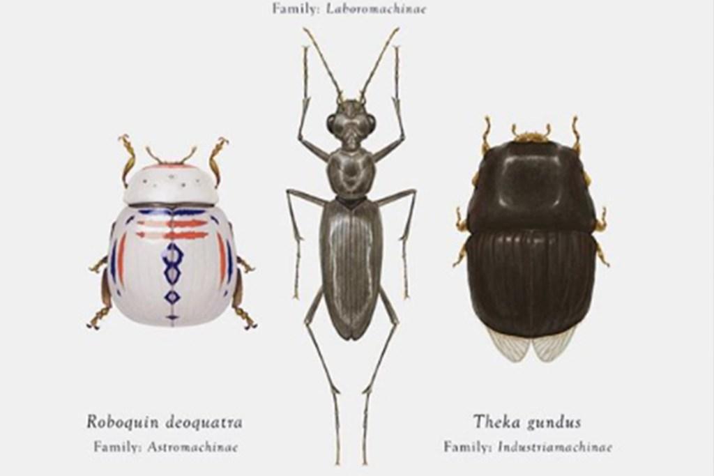 Insectos de Star Wars y Pokemon pueden ser tuyos