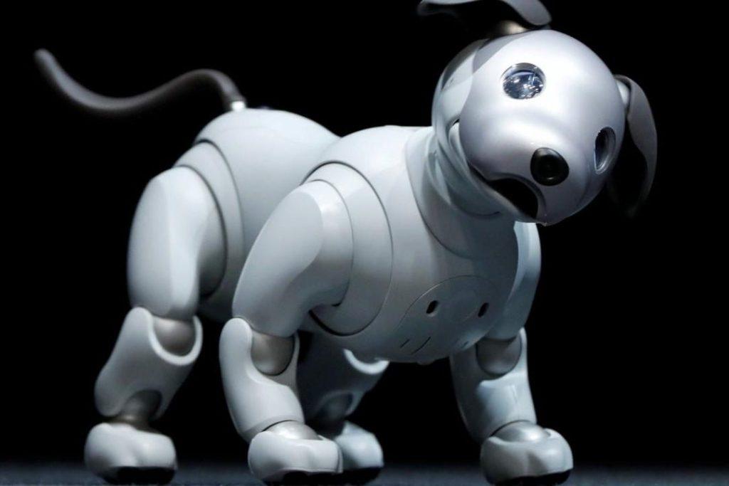 ¡El Perrobot de Sony ya está disponible en nuevos colores!