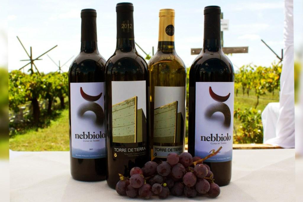 Cuatro experiencias en Cuna de Tierra para amantes del vino