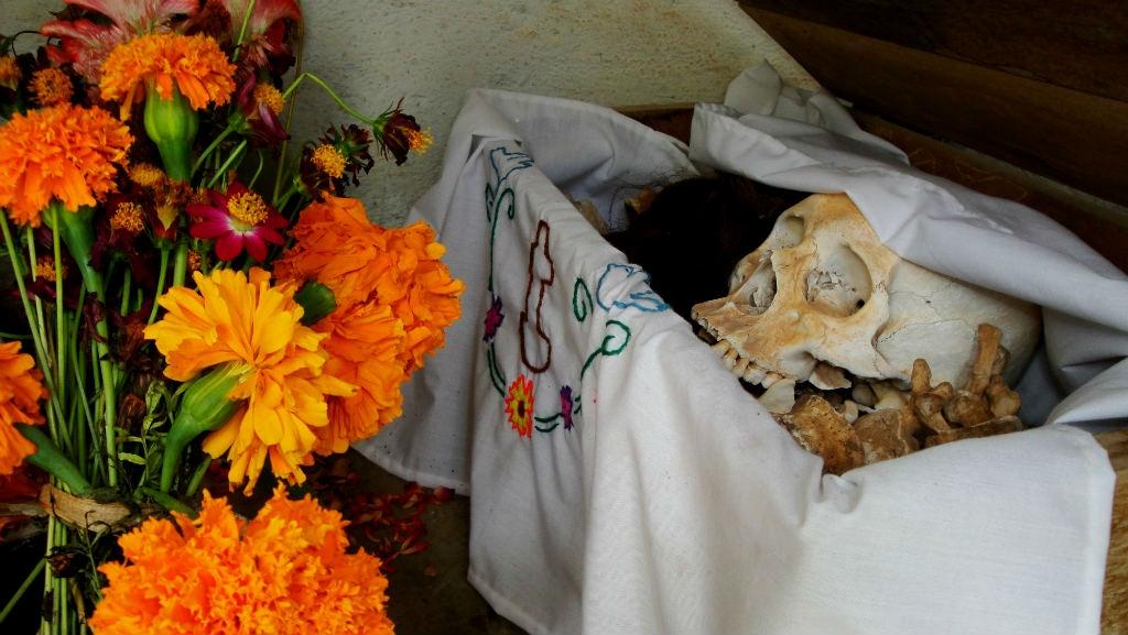 flores Scott Emily 1024x577 - Seis lugares para disfrutar este Día de Muertos con tus seres queridos