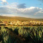 30 tequilas para la colección de un buen patriota