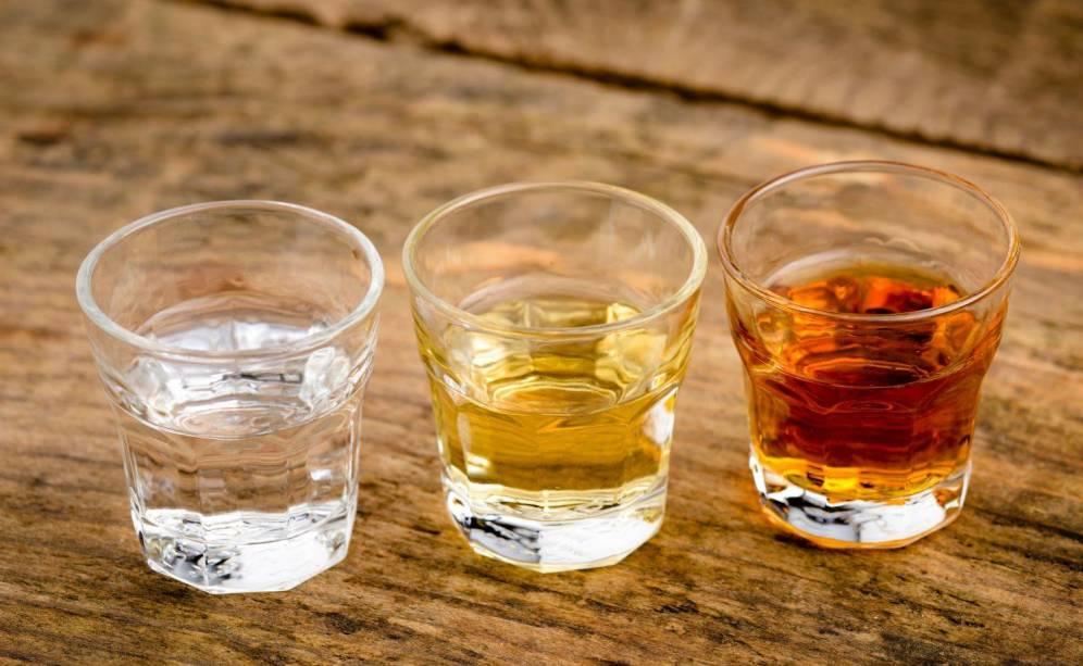 ni tequila ni mezcal raicilla el destilado mexicano mas especial - Te enseñamos cómo escoger el mejor tequila para las fiestas patrias
