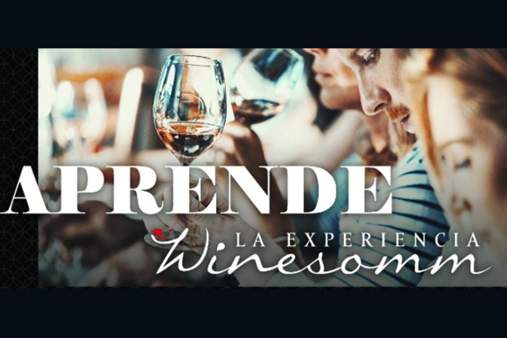 ¡Disfruta vinos exquisitos y vive la experiencia del maridaje en Winesomm!