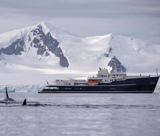 Viaje a la Antártica a bordo de un súper yate, el mejor regalo de fin de año