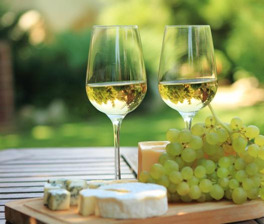 Conoce los vinos blancos ideales para refrescarte del calor veraniego