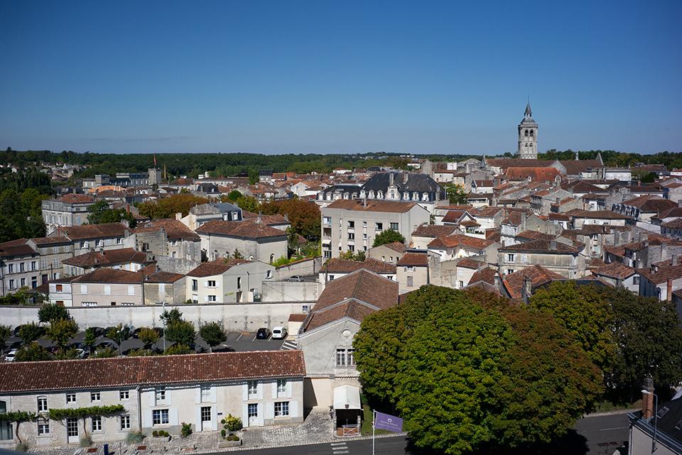 Cognac, la tierra -calcárea- prometida