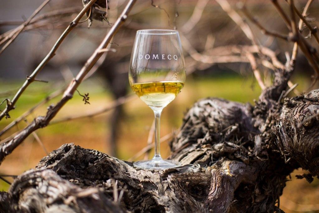 Vino Chateau Domecq blanco (2018)