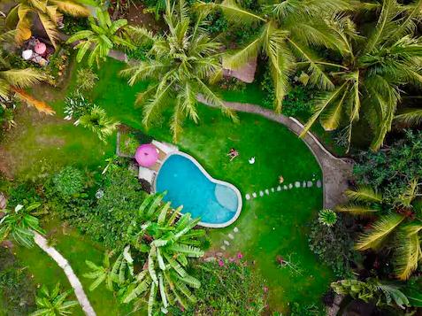 AIRBNB Casa del árbol Balian en Indonesia