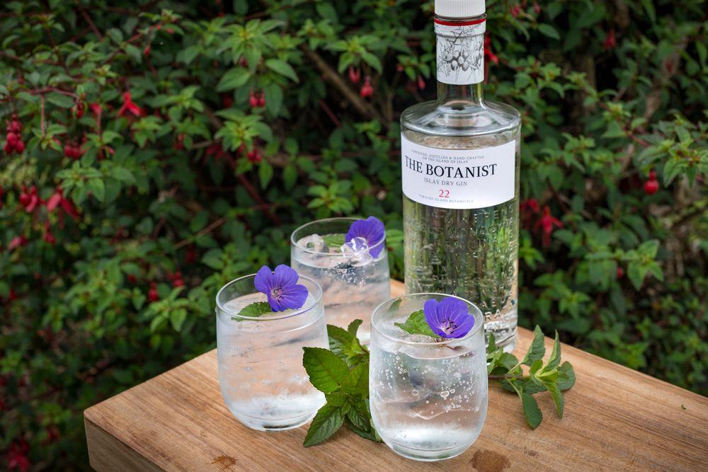 Conoce el gin-tail perfecto para ti según tu signo zodiacal