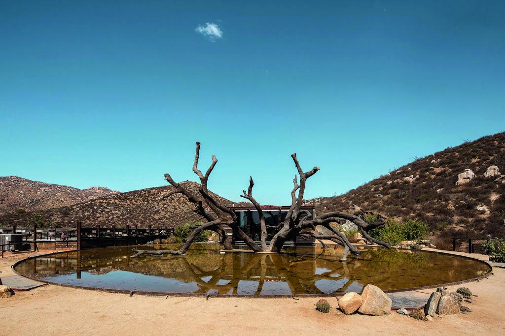Bruma te hará sentir como en casa en el Valle de Guadalupe